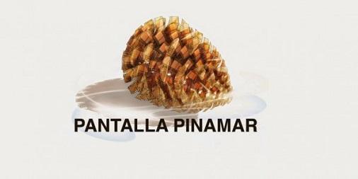 Preocupación por Pantalla Pinamar